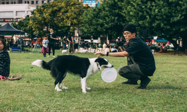 STRUCTURING YOUR RELATIONSHIP WITH YOUR PET